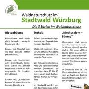 waldnaturschutz 3 säulen.indd