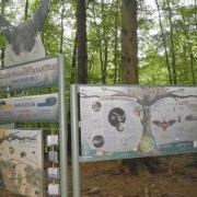 Burgwindheim Labyrinthstation