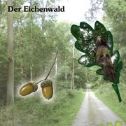 4-alteichen-der-eichenwald.v1